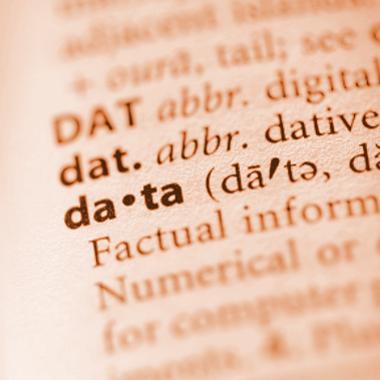 Data Consultancy